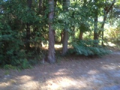 Martinez Residential Lots & Land U: 378 Forest Court
