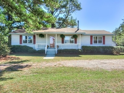 North Augusta Single Family Home For Sale: 198 Big Cone Drive