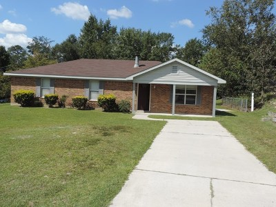 Hephzibah Single Family Home For Sale: 3404 Nance Blvd