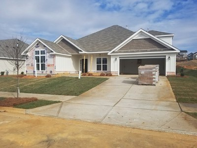 North Augusta Single Family Home For Sale: 349 Bridle Path Drive