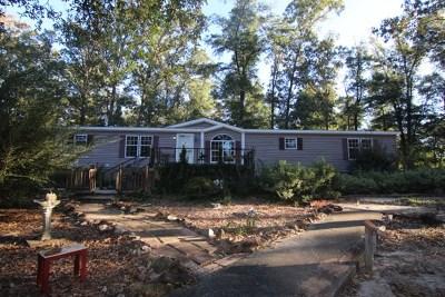 Waynesboro Single Family Home For Sale: 459 Trace Lane