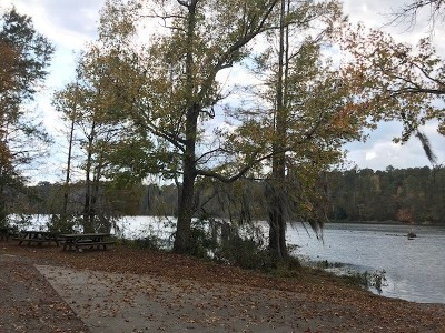 Residential Lots & Land For Sale: 40 Dock Drive