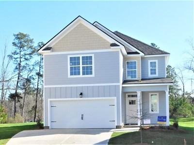 Grovetown Single Family Home For Sale: 476 Riley Lane