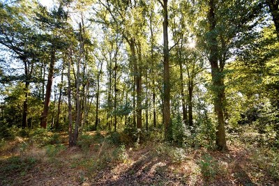 Aiken Residential Lots & Land For Sale: Lot 0 Coward Road