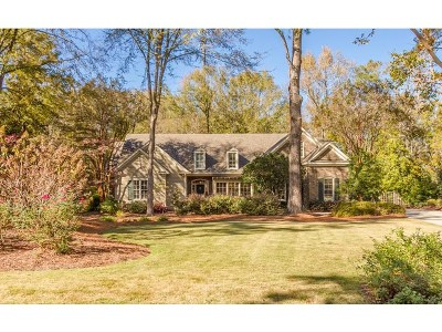 Single Family Home For Sale: 3463 Stallings Island Road