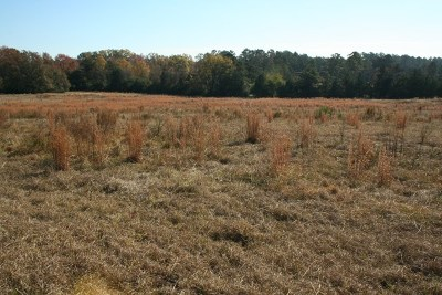Appling Residential Lots & Land For Sale: 6590 Ridge Road