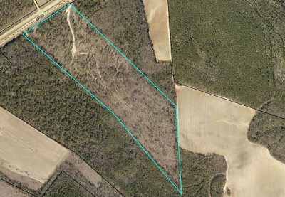 Residential Lots & Land For Sale: Highway 88