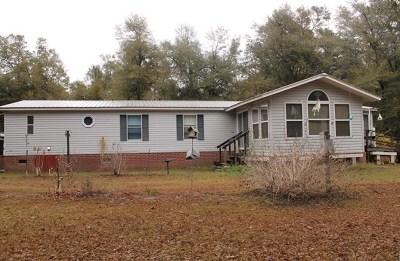 Hephzibah Single Family Home For Sale: 2509 Pineneedle Road