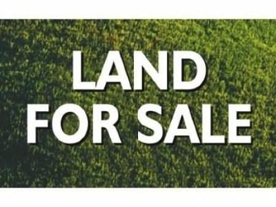 Hephzibah Residential Lots & Land For Sale: 1910 McDade Road
