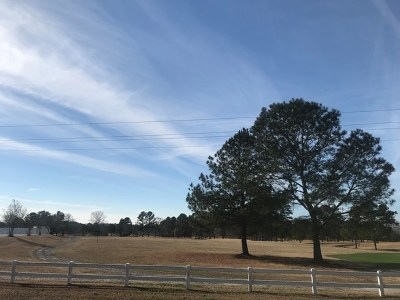 Lincolnton Residential Lots & Land For Sale: 3.77 Ac. Double Branches Road