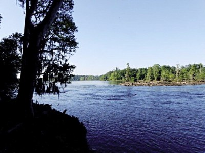 North Augusta Residential Lots & Land For Sale: 186 Altamaha