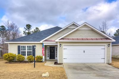 Grovetown Single Family Home For Sale: 521 Sebastian Drive