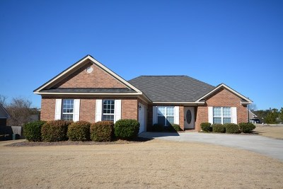 Grovetown Single Family Home For Sale: 915 Niagra Falls