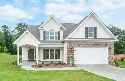 North Augusta Single Family Home For Sale: 3151 Lake Norman Drive