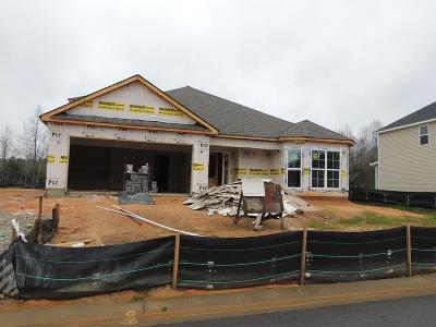 Grovetown Single Family Home For Sale: 4419 Raleigh Drive