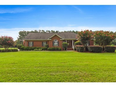 Aiken Single Family Home For Sale: 1433 Banks Mill Road