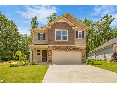 Grovetown Single Family Home For Sale: 207 Caroleton Drive