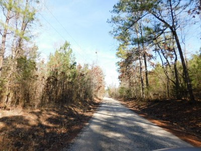 Lincoln County Residential Lots & Land For Sale: Ferguson Justice Road