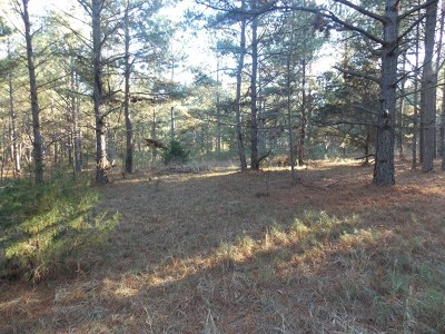 Lincoln County Residential Lots & Land For Sale: 20 Hwy 220e