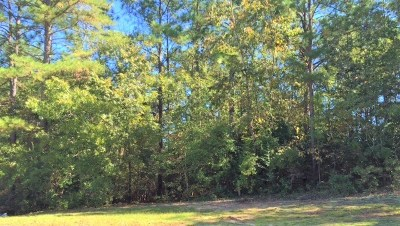 Aiken Residential Lots & Land For Sale: 213 Crane Court