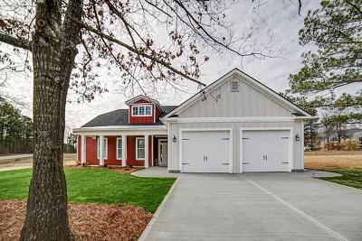 Aiken Single Family Home For Sale: 501 Summer Lake Drive