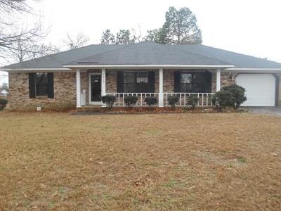 Hephzibah Single Family Home For Sale: 3918 Ellen Street