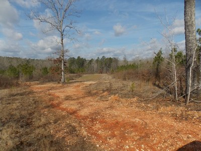 Lincoln County Residential Lots & Land For Sale: 63 Maxim Road