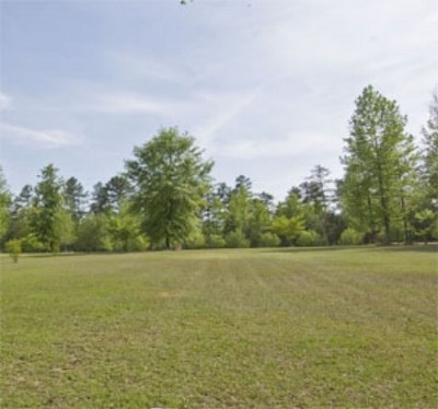 Aiken Residential Lots & Land For Sale: Lot 01 Herndon Dairy Road