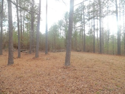 Lincolnton Residential Lots & Land For Sale: Lot 13 Savannah Bay Drive