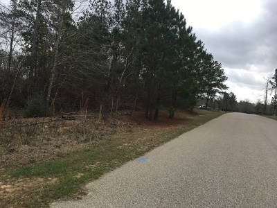 Hephzibah Residential Lots & Land For Sale: 3029 Old Lodge Road