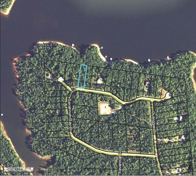 Lincolnton Residential Lots & Land For Sale: Lot 19 Savannah Bay Drive