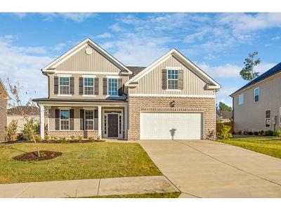 Grovetown Single Family Home For Sale: 849 Williford Run Drive