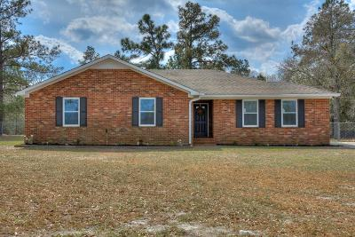Hephzibah Single Family Home For Sale: 2402 Patiller Road