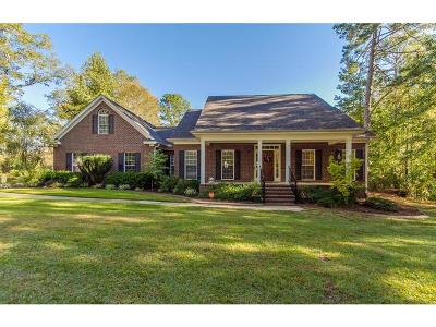 Grovetown Single Family Home For Sale: 499 Sugar Creek Drive