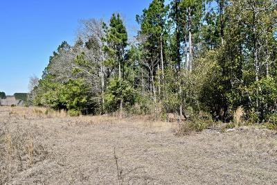 Aiken Residential Lots & Land For Sale: New Bridge Road