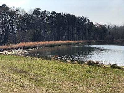 Edgefield County Single Family Home For Sale: 42 Sunhigh Road