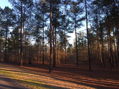 Aiken Residential Lots & Land For Sale: 1730 Cedar Meadows Road