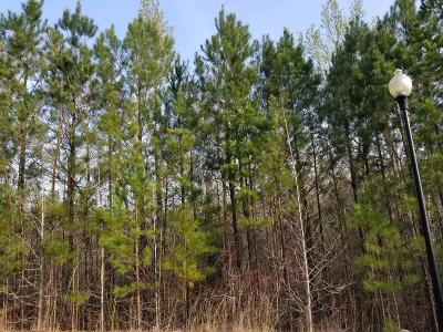 Edgefield County Residential Lots & Land For Sale: Palmetto Point Drive