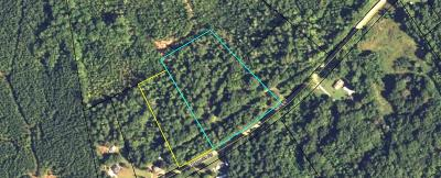 Lincolnton Residential Lots & Land For Sale: 3190 Metasville Road