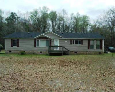McDuffie County Single Family Home For Sale: 3576 Headstall Lane