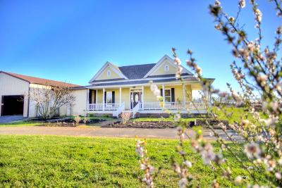 Edgefield County Single Family Home For Sale: 136 Derrick Road