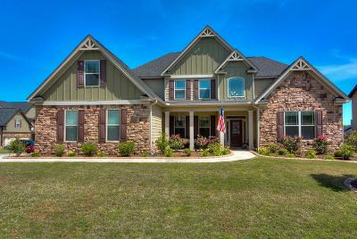 Grovetown Single Family Home For Sale: 203 Dripping Rock Pass