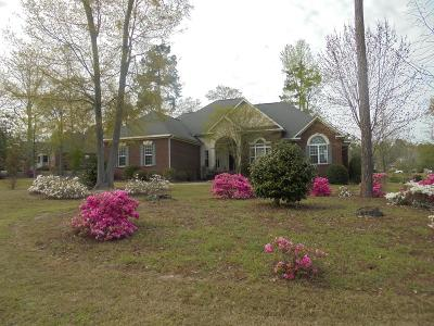Single Family Home For Sale: 329 Summer Creek Drive