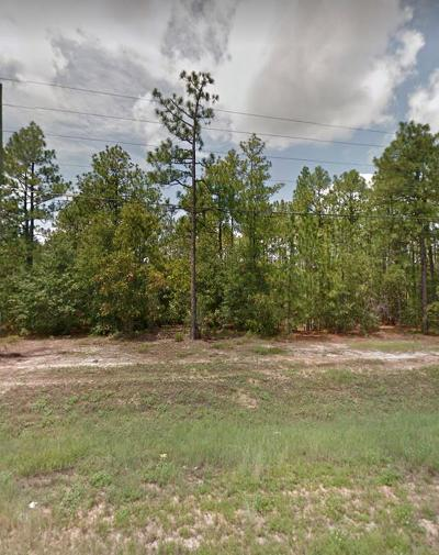Richmond County Residential Lots & Land For Sale: 4463 Dean Bridge Road