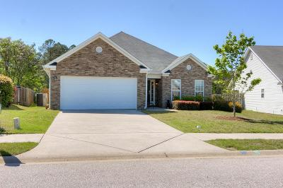 Grovetown Single Family Home For Sale: 256 High Meadows Circle