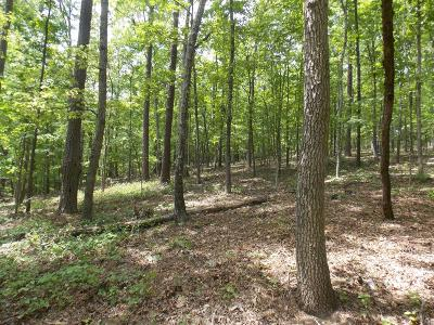 Lincolnton Residential Lots & Land For Sale: 41 Shelter Cove Rd