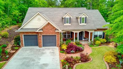 Aiken Single Family Home For Sale: 113 Glen Haven Circle