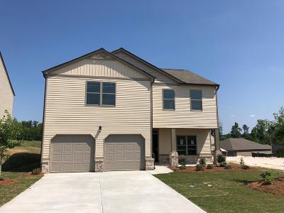 Augusta Single Family Home For Sale: 367 Stablebridge Drive