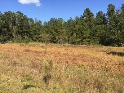 Aiken Residential Lots & Land For Sale: 2199 Green Pond Road