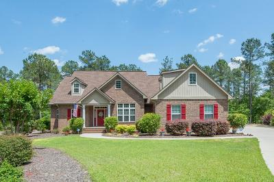 Aiken Single Family Home For Sale: 5091 Lady Bank Lane